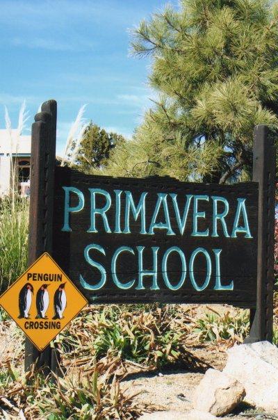 Primavera School